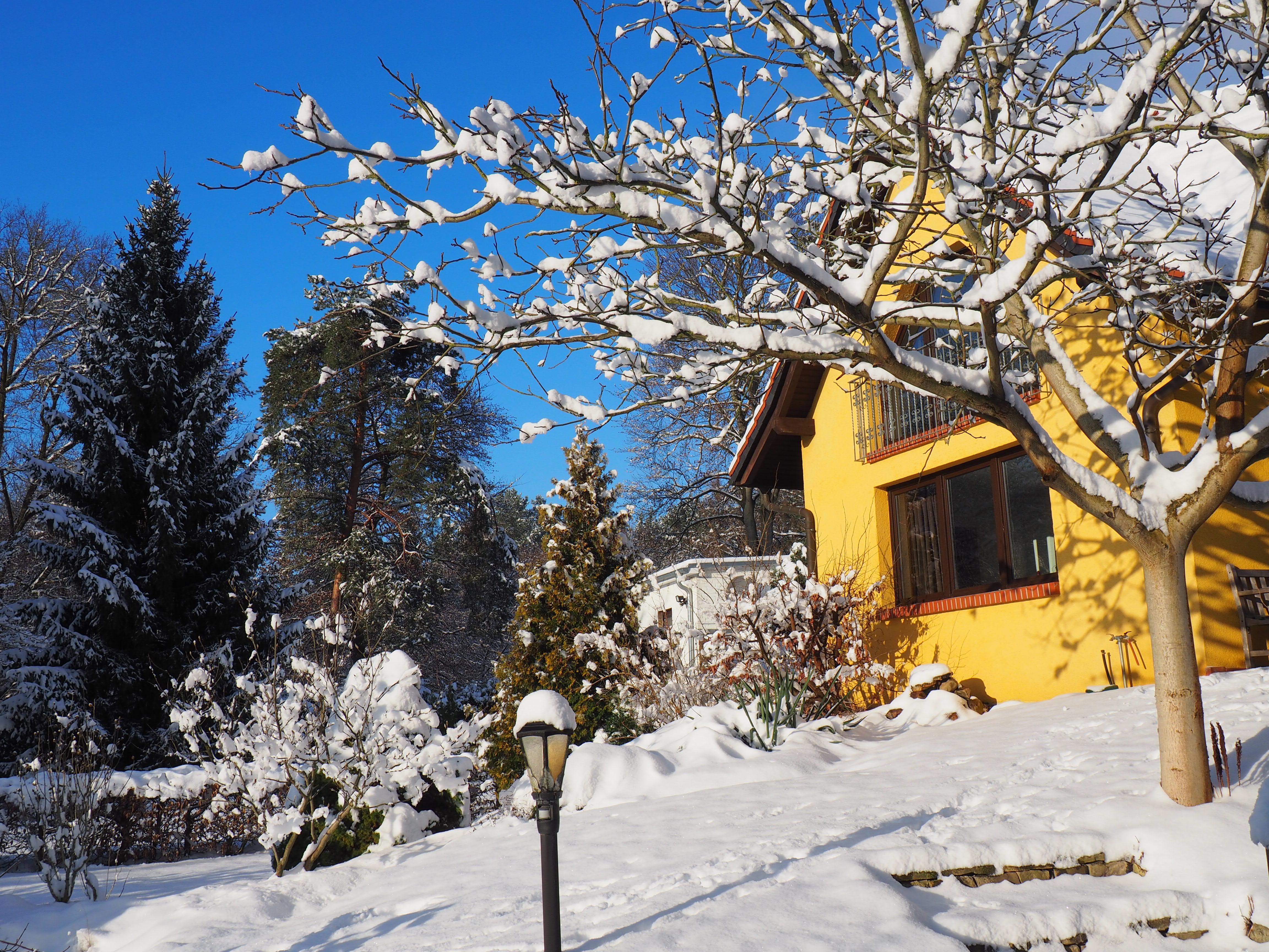 Winter-Ansicht-hinten